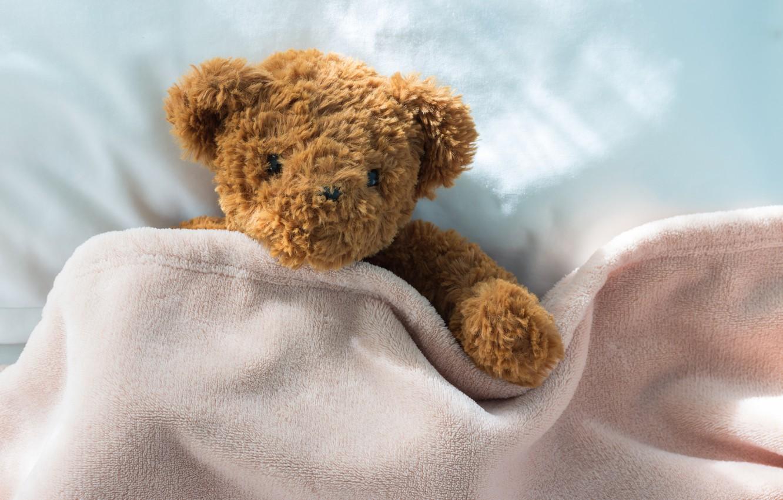 Обои little, Teddy, Медведь, bed, cute, мишка. Разное foto 13