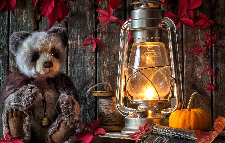 Фото обои листья, игрушка, лампа, медведь, фонарь, тыква, плюшевый мишка, катушка