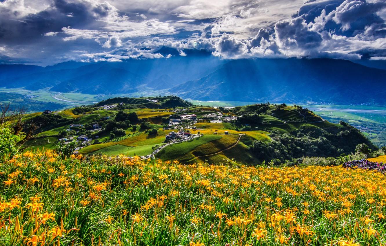 Фото обои облака, цветы, горы, China, деревня, панорама, Китай, Тайвань, Taiwan, горные лилии, Hualien County, Fuli, уезд …