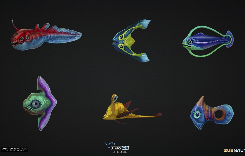 рыба из игры что на картинке особенностей