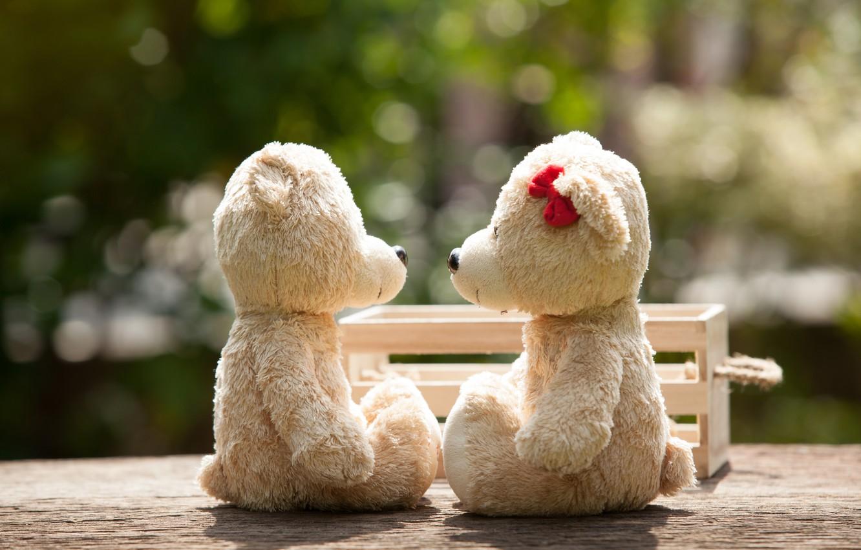 обои любовь игрушка медведь пара Love Bear Park Kiss