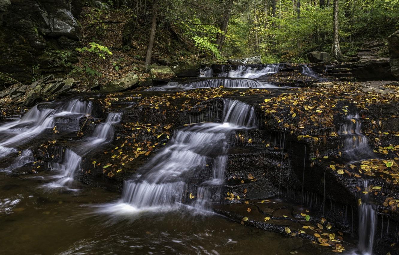 Фото обои осень, природа, водопад
