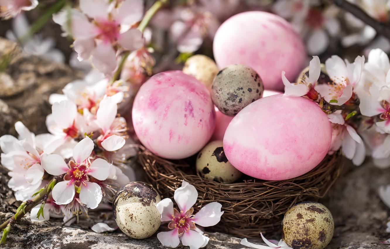 Фото обои Цветы, Пасха, Яйца, Праздник