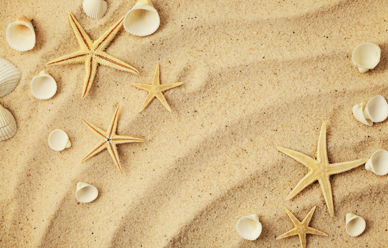 Обои Seashells, Marine, ракушки, wood, sand, perl, starfish, жемчужина. Разное foto 19