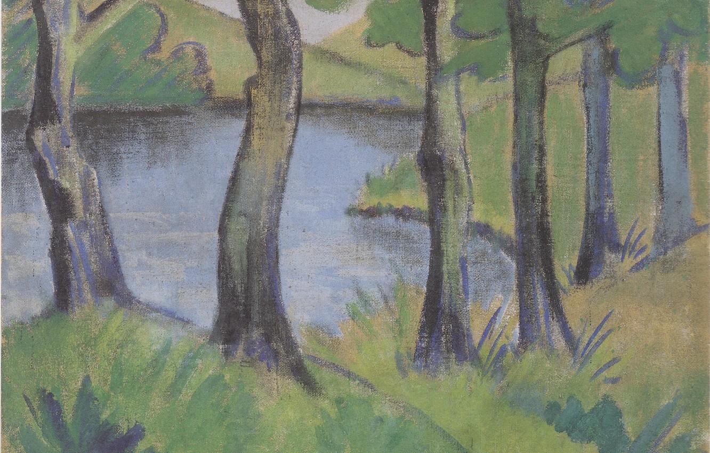 Фото обои трава, деревья, озеро, кусты, Экспрессионизм, Otto Mueller, ca1919, Waldsee