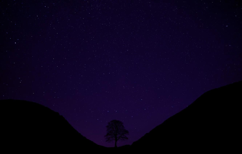 Фото обои звезды, ночь, звездное небо