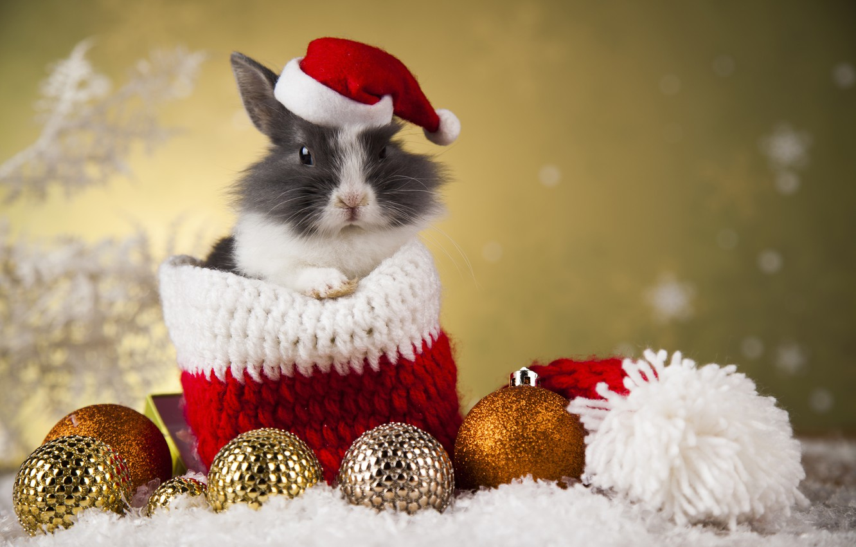 Фото обои праздник, игрушки, новый год, кролик, мешок