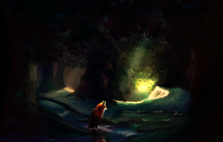 Фото обои лес, вода, природа, лиса, by Skysurie