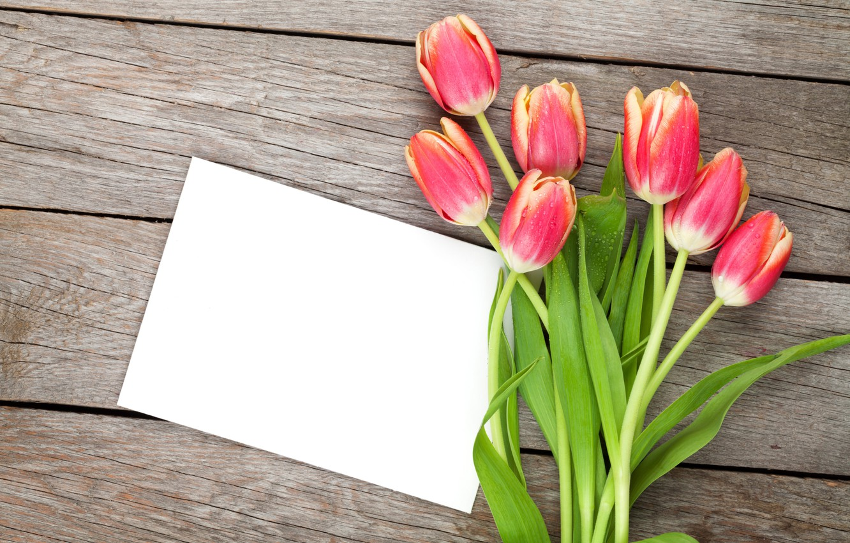 Фото обои тюльпаны, red, love, бутоны, fresh, flowers, romantic, tulips, spring, valentine`s day