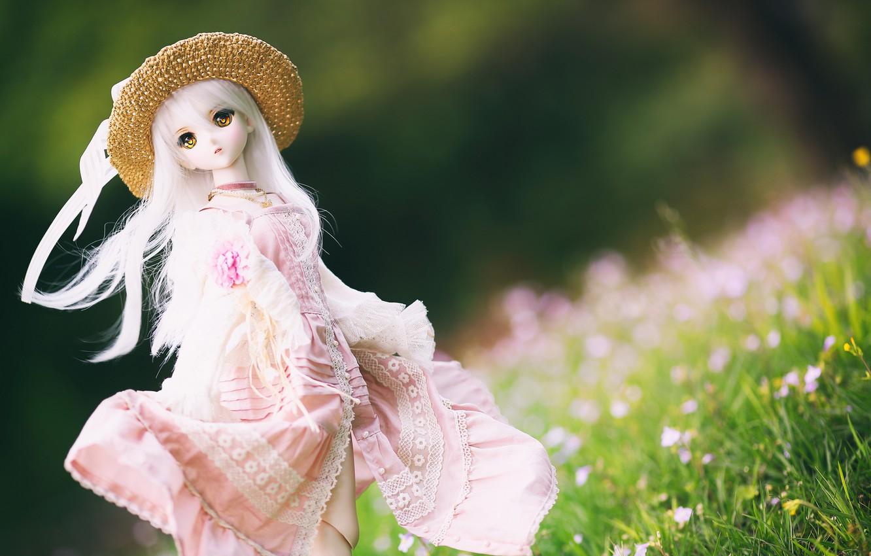 Фото обои игрушка, шляпа, кукла, платье