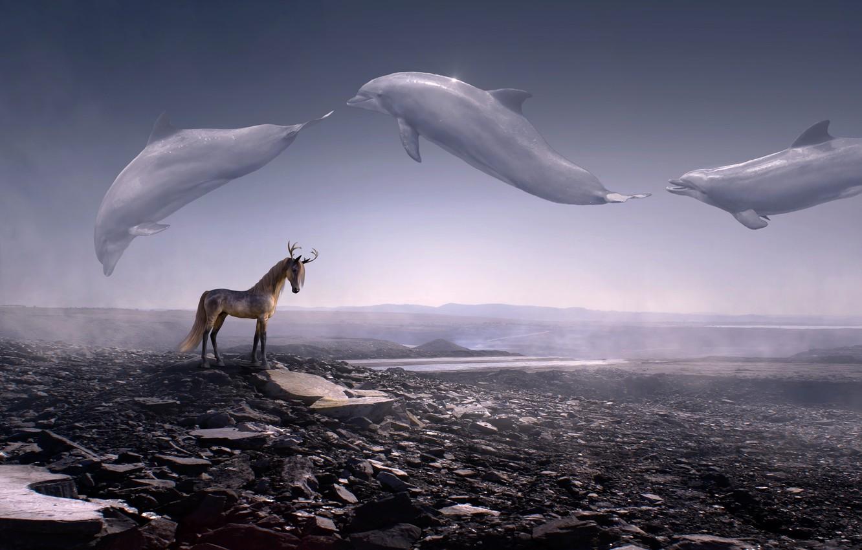 Обои Человек, волна, Олень, конь. Разное foto 9