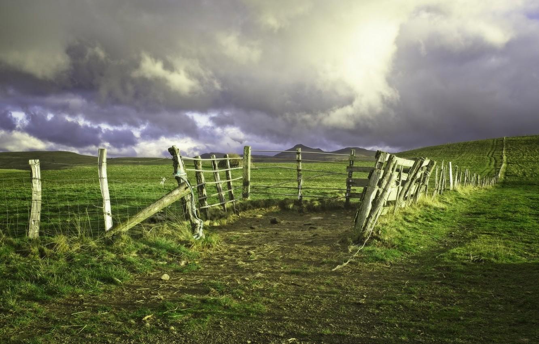 Фото обои поле, пейзаж, природа, красота