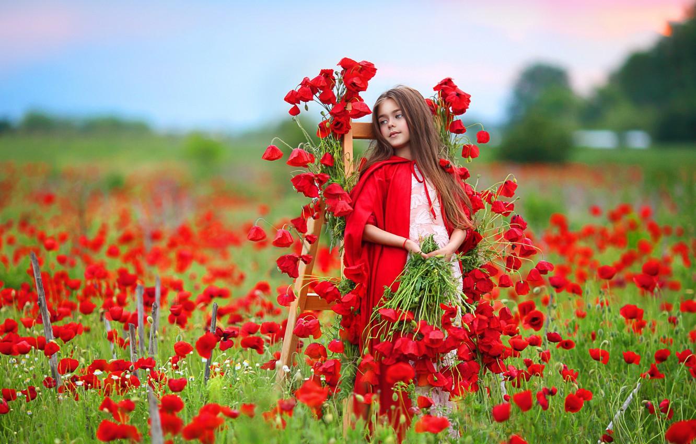 Фото обои цветы, природа, маки, девочка