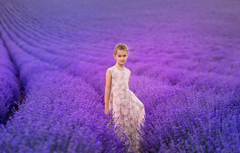 Фото обои поле, цветы, природа, девочка, лаванда