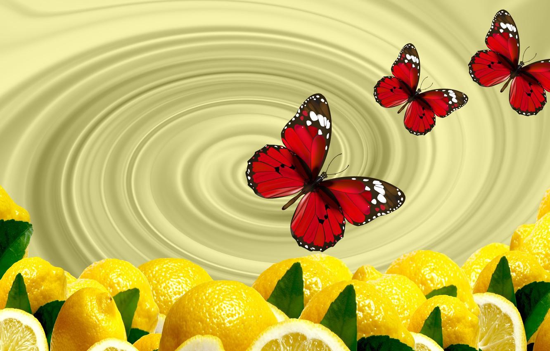 Фото обои бабочки, обои, цитрус, лимоны