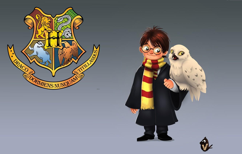 Фото обои арт, Гарри Поттер, детская, полярная сова, Vipin Jacob, Букля, Harry and Hedwig, Hedwig, Хедвиг