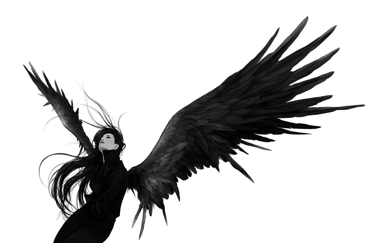Фото обои взгляд, девушка, белое, черное, Крылья