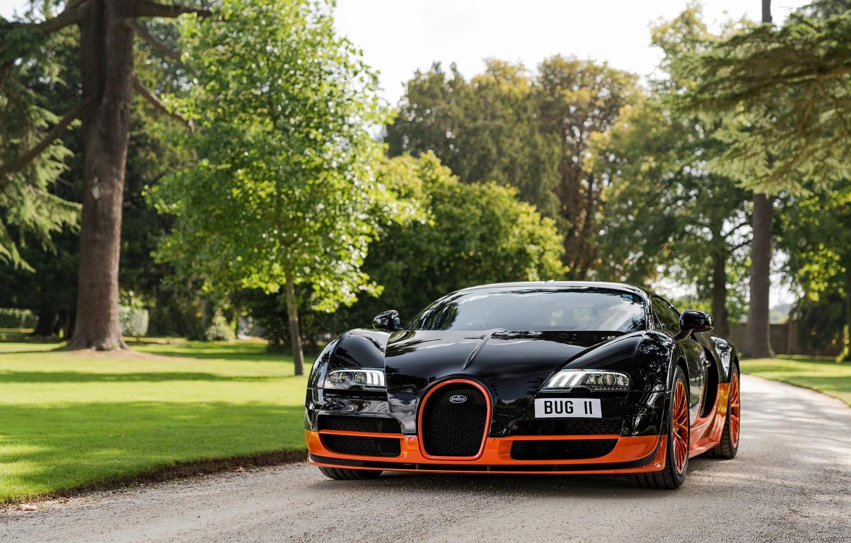 Фото обои парк, чёрный, Veyron, Bugatti Veyron, гиперкар