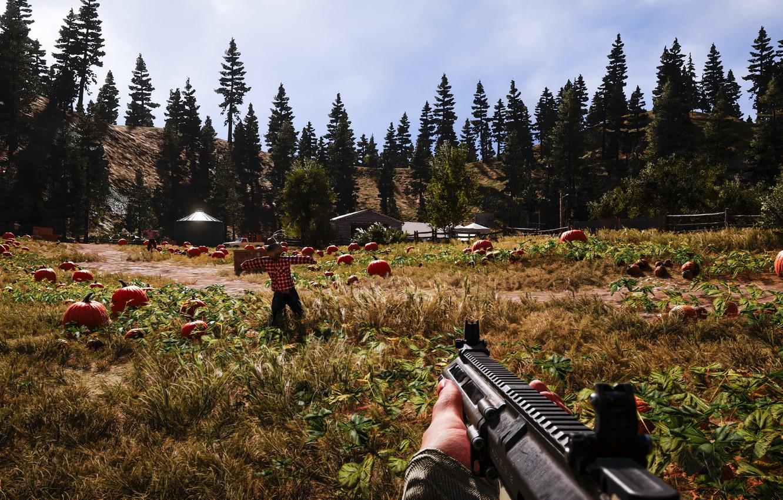 Фото обои оружие, игра, Far Cry 5