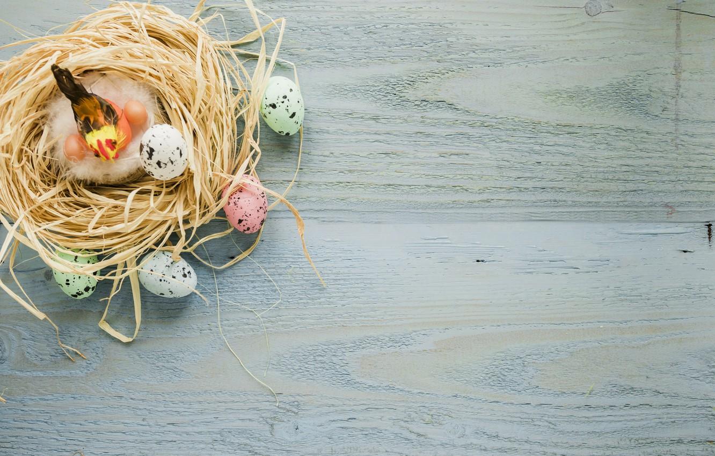 Фото обои яйца, Птица, пасха, солома, Праздник, Гнездо, православный праздник