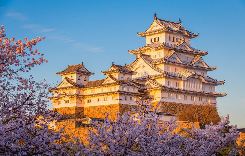 замки японии фото владеют мастерством иллюзии