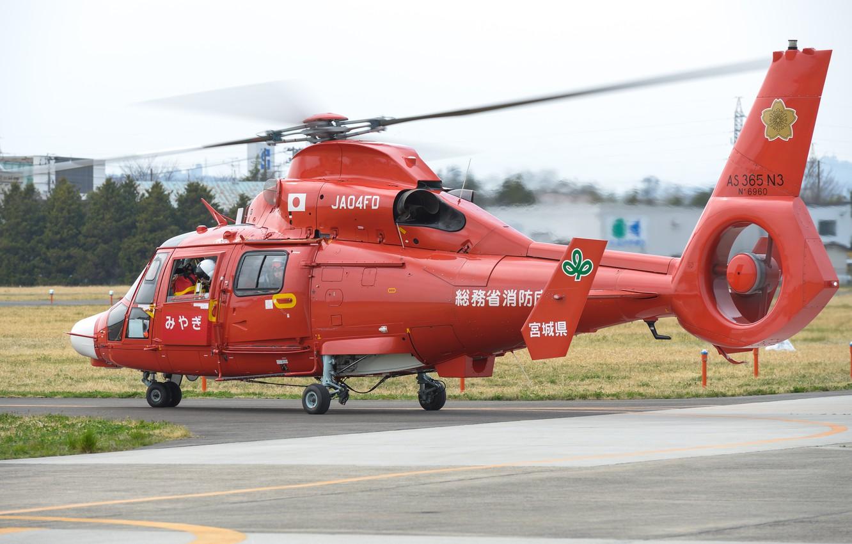 Обои Eurocopter, многоцелевой, as 365 n2, dauphin 2. Авиация foto 7