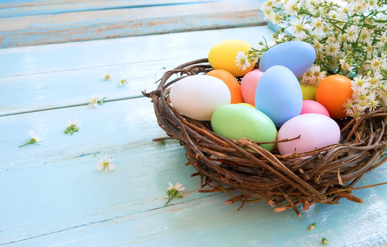 Фото обои ромашки, яйца, пасха, гнездо, Праздник