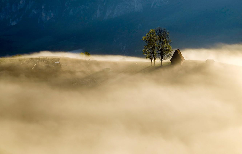 Фото обои горы, природа, туман, поля, утро