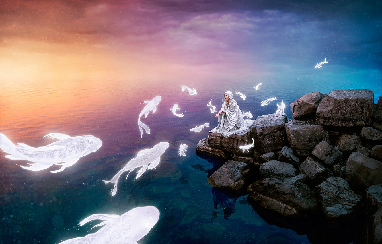 Фото обои море, девушка, рыбы, закат, камни