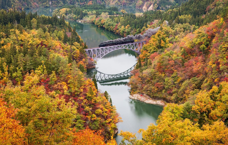 Фото обои осень, деревья, мост, река, краски, поезд, паровоз