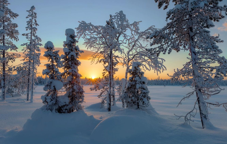 ростеста проверяют, пейзаж север зима фото картинки видео