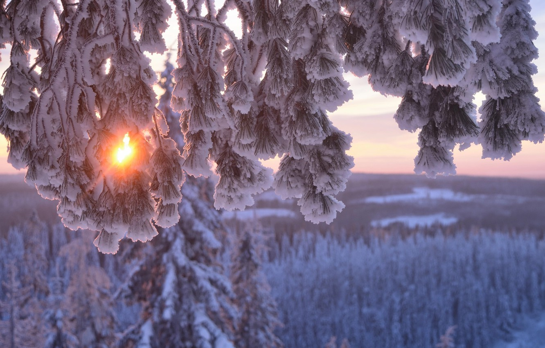 борту вертолета, фото пейзажи зима снег макро втором