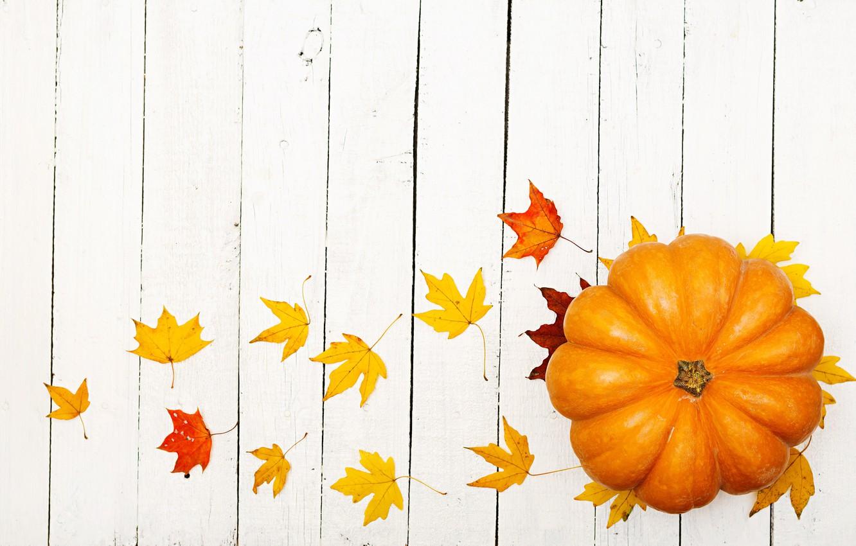 Фото обои осень, листья, тыква, дары осени
