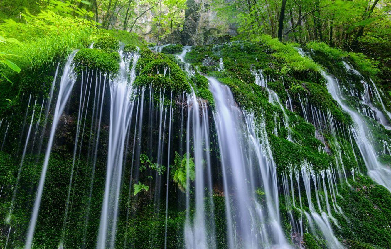 Фото обои вода, природа, камни, растительность, водопад, мох