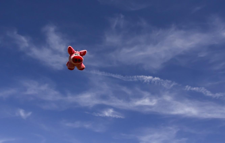 Фото обои небо, игрушка, хрюшка, поросёнок, летающая свинья
