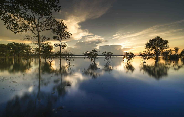 Фото обои облака, деревья, озеро, отражение