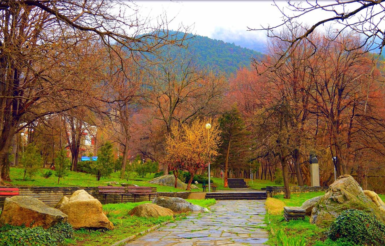 Фото обои Весна, Деревья, Парк, Nature, Park, Spring, Trees