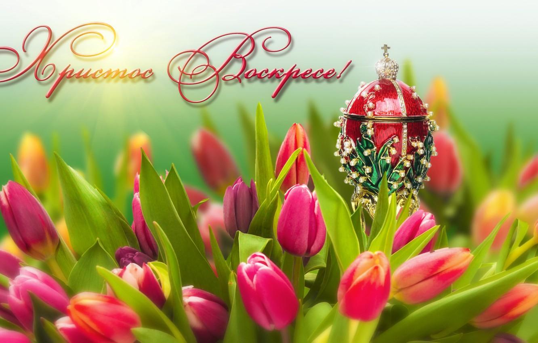 Фото обои цветы, праздник, яйцо, Пасха, тюльпаны