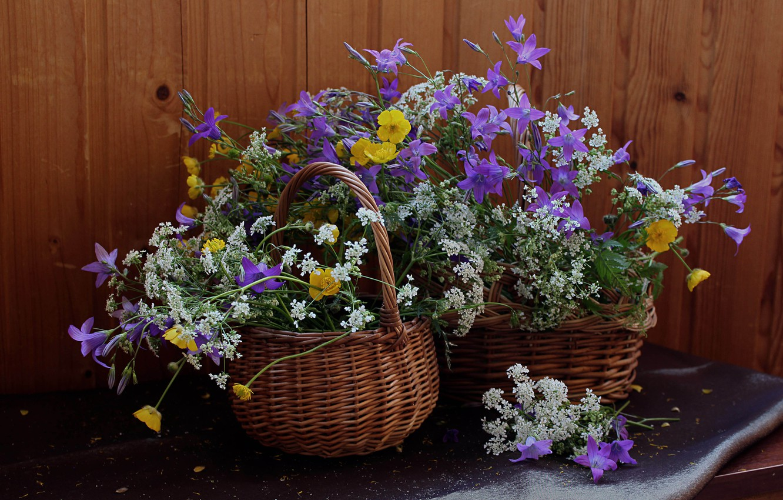 гифка красивые цветы и домашние и полевые фото коллекция нашем