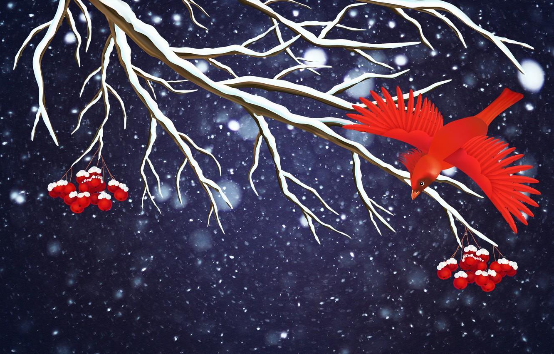 Фото обои Зима, Минимализм, Птица, Снег, Ветка, Снежинки, Фон, Рябина, Праздник