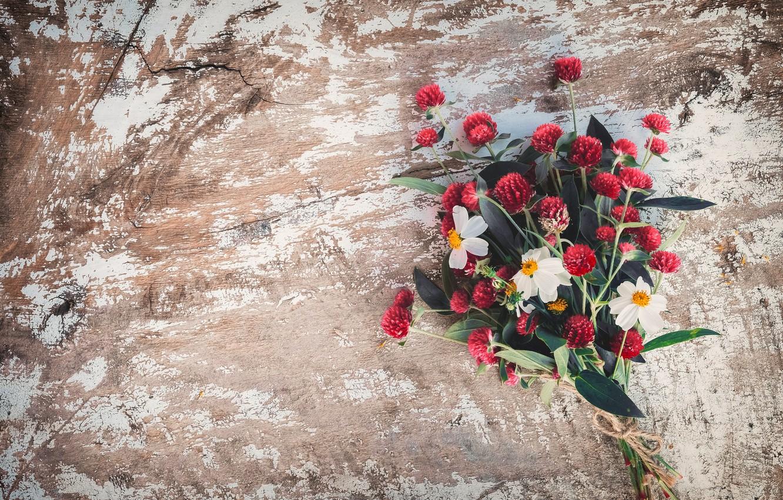 Фото обои Цветы, Букет, Клевер, Нарциссы