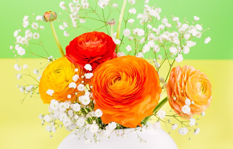 Фото обои растение, букет, ваза, лютик азиатский