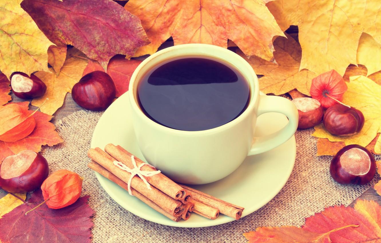Фото обои осень, листья, кофе, чашка, желуди, autumn, leaves, book, fall, cup of coffee