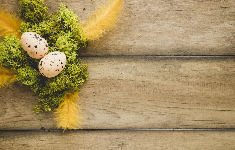 Обои перья, яйца. Праздники foto 17