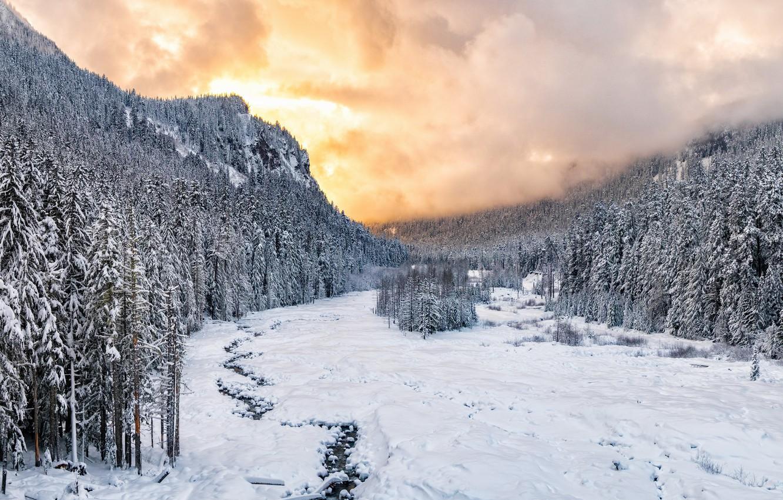 Фото обои Sunset, winter, snow, national park, Nisqually River valley, Mount Rainie