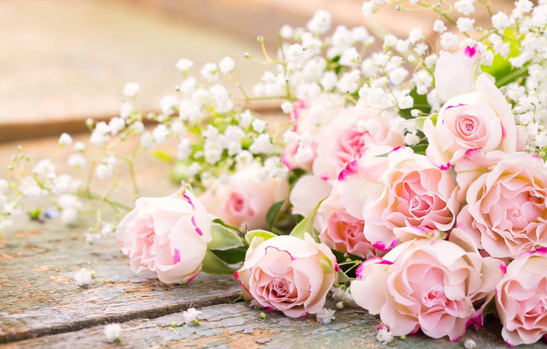 Фото обои розы, pink, flowers, romantic, roses