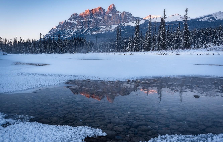 Фото обои зима, лес, вода, снег, природа, река, камни