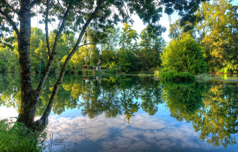 Фото обои Отражение, Озеро, Деревья