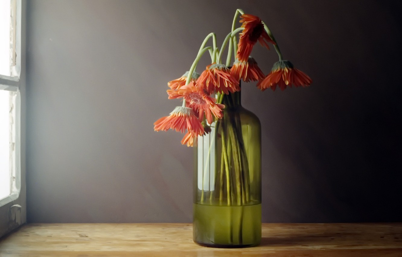 Фото обои цветы, фон, бутылка