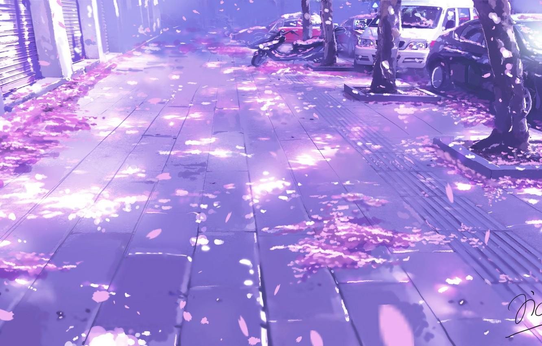 Фото обои авто, улица, весна, лепестки, тротуар, стволы деревьев, art, безлюдная, Xi Chen Chen